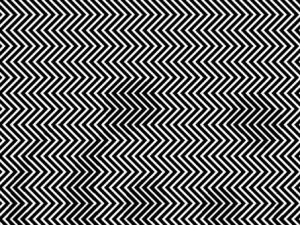 Iluzia optica care a luat cu asalt internetul. Priveste cu atentie imaginea si descopera ursul panda