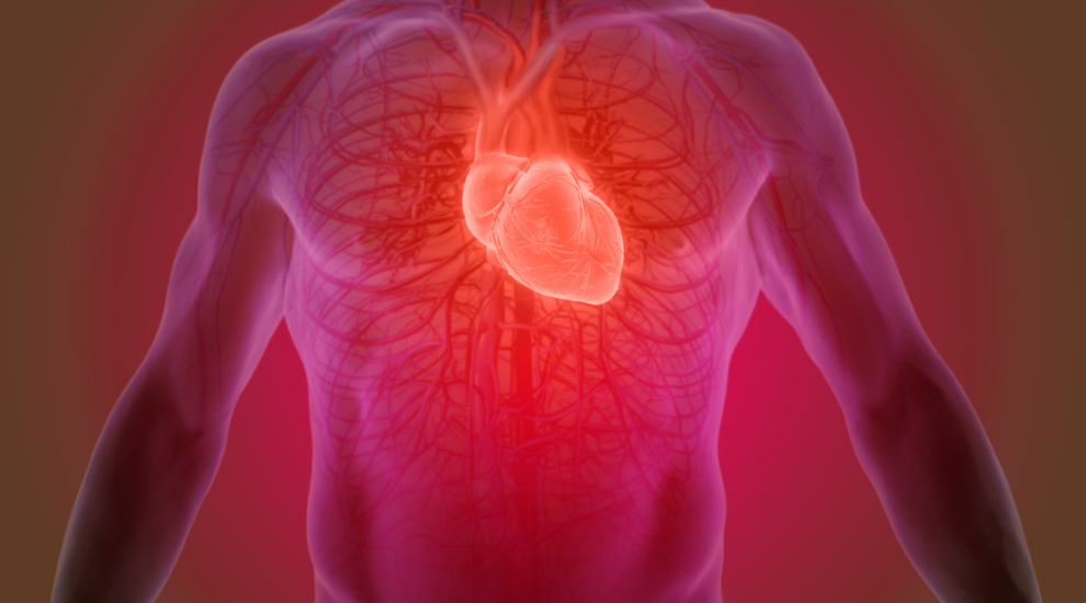 (P) Despre bolile valvelor inimii ndash; valvulopatiile