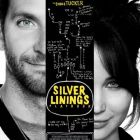 Silver Linings Playbook: nebunie in doi