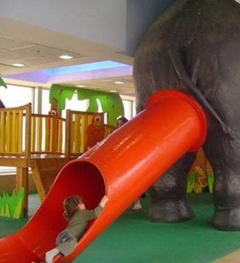 http://assets.sport.ro/assets/protv/2011/02/11/image_galleries/12558/40-de-imagini-absurde-incearca-sa-le-gasesti-o-explicatie-foto_34.jpg