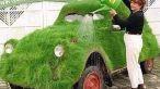 Au vrut sa fie inconjurati de iarba verde.Uite cum si-au decorat masinile!