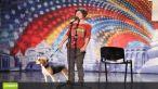 Romanii au talent   vs.  Britain s Got Talent ! Bailey vs. Pudsey! Spune tu care este cel mai tare caine dansator din acest sezon