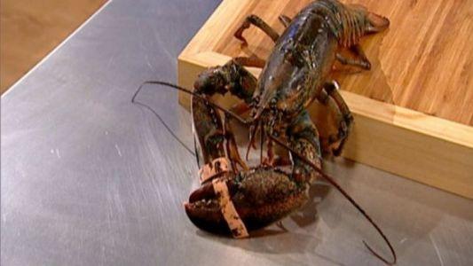 "Nicusor: ""Eu nu pun mana pe homar, mi-e frica!"""