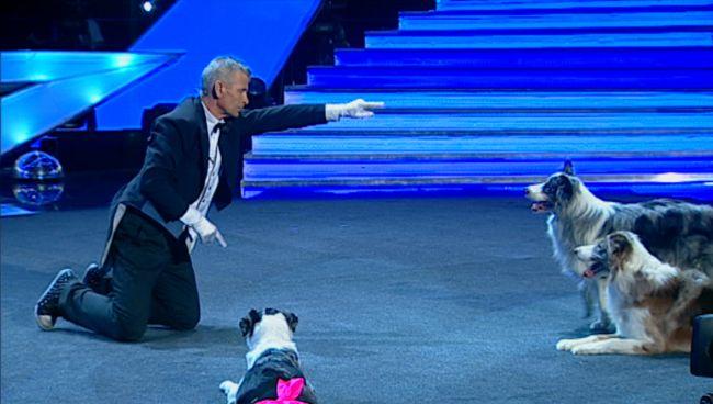 Bruno Icobet si cainii sai, un moment aproape magic la  Romanii au talent . Dresorul nu a rostit niciun cuvant, de la inceput pana la sfarsit: VIDEO