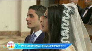 Velea si Antonia, la mana lui Vincenzo