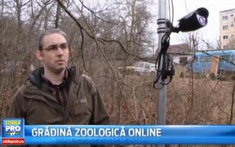Prima gradina zoologica online din Romania. Ideea unui tanar pentru ca animalele sa nu mai fie admirate de dupa gratii