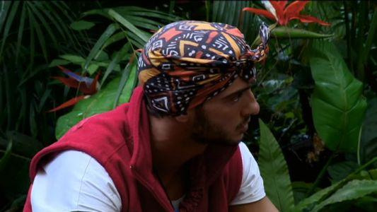 Dorian, discutii aprinse cu vedetele din jungla
