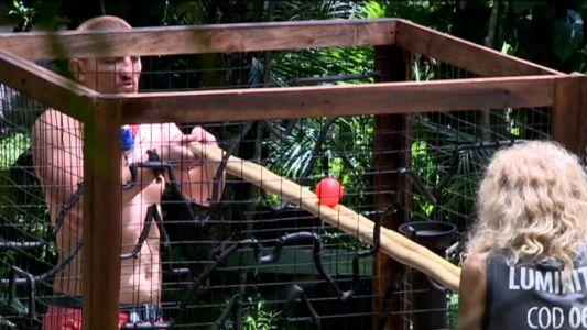 Prima proba colectiva din jungla. Ce au facut concurentii pentru mancare suplimentara