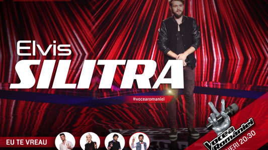 Vocea Romaniei - sezonul 5: Elvis Silitra - Time Is Running Out