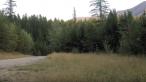 Un biciclist a observat miscare in iarba. Cand a vazut ce il urmarea si-a dat seama ca nu este deloc bine