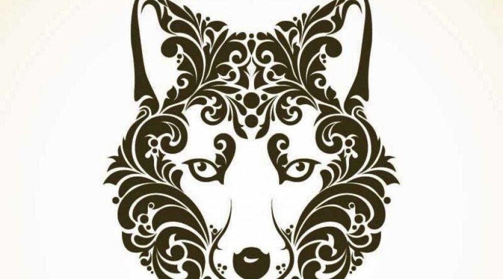 Zodiac celtic: ce zodie esti in functie de perioada in care te-ai nascut