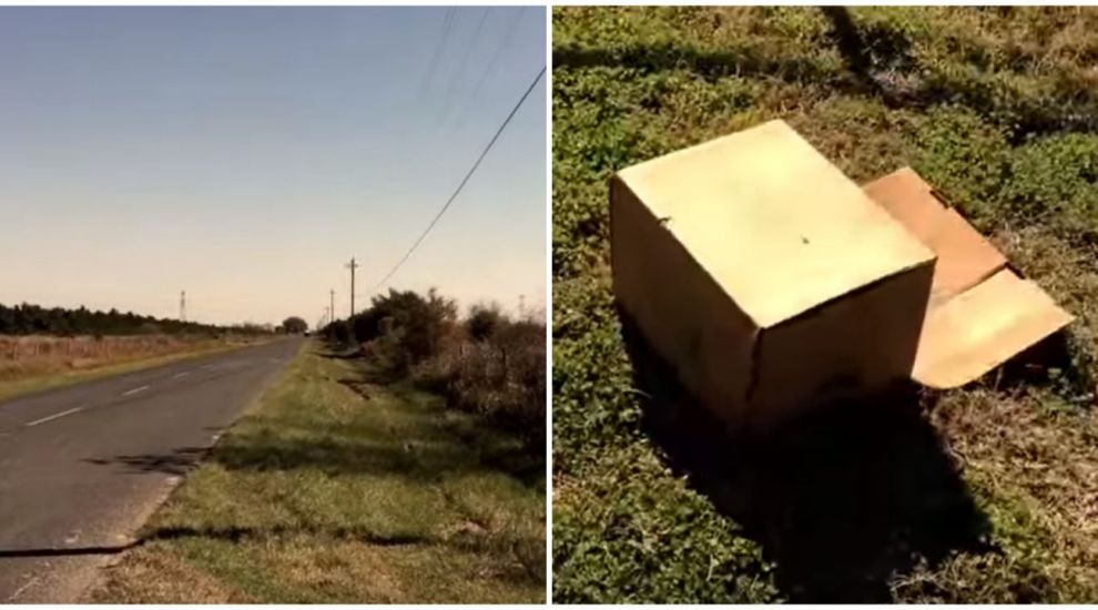 Un biciclist a vazut o cutie pe marginea drumul. Cand a deschis-o, si-a dat seama ca nu toti oamenii au sentimente