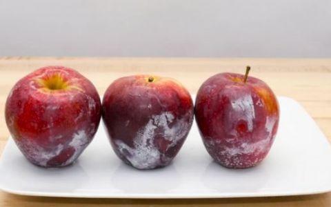 Experimentul care iti va schimba total perceptia despre modul in care speli fructele