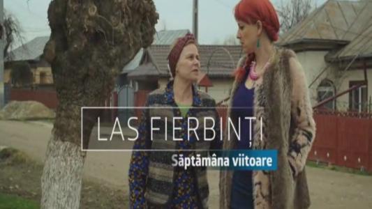 Las Fierbinti , joi, de la 20:00, la ProTV
