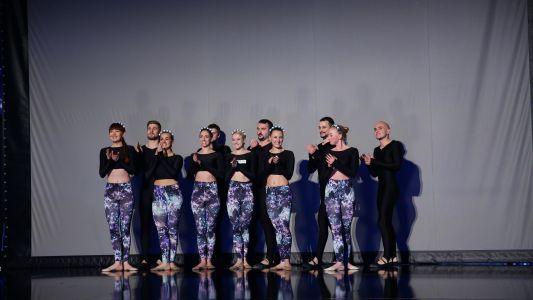 Romanii au talent 2016: Trupa VERBA - Teatru cu umbre