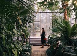 Cum au ajuns fotografiile acestui roman pe Instagram sa transforme Clujul intr-o destinatie de vacanta pentru europeni