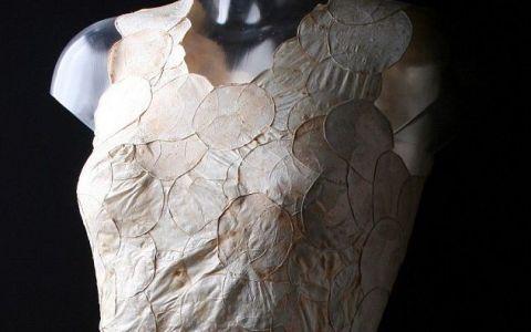 S-a lucrat un an si jumatate pentru crearea acesti rochii, insa nimeni nu-si doreste sa o poarte. Motivul pentru care femeile o refuza
