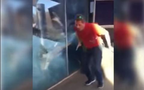 Acest barbat a inceput sa faca flotari la gradina zoologica. Reactia ursului polar nu trebuie ratata