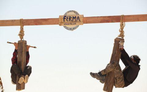Denis Stefan a fost eliminat de la Ferma vedetelor! Ionut Iftimoaie si Augustin Viziru se intorc la viata din ferma!