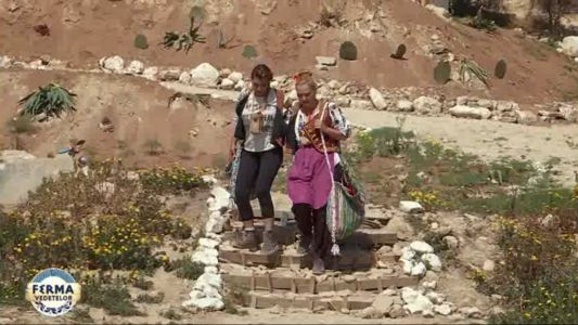 Sorana Darclee se dueleaza cu Elena Lasconi pentru a ramane la Ferma Vedetelor