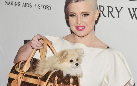 Coafura ei neconventionala si tatuajul de pe scalp ascund o poveste emotionanta. De ce si-a facut Kelly Osbourne asta