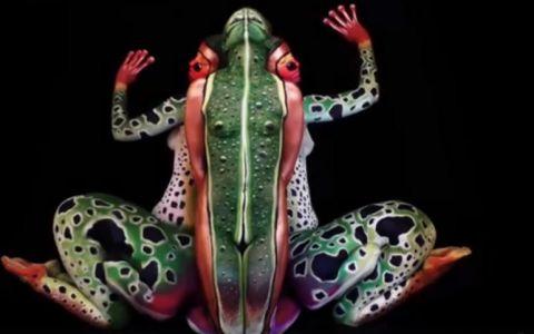 Iluzia optica impresionanta creata cu ajutorul desenelor si culorilor. Ce ascunde cu adevarat aceasta imagine