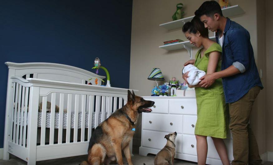 O sarcina in 60 de secunde. Un viitor tatic si-a fotografiat zilnic sotia insarcinata. Detaliul pe care l-a observat