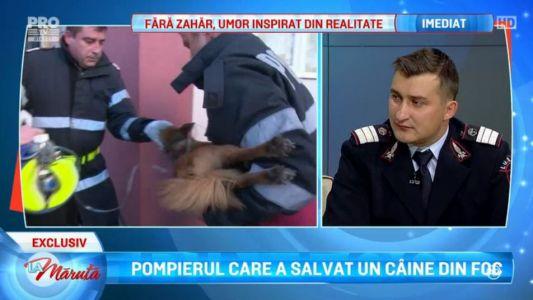 Pompierul care a salvat un caine din foc