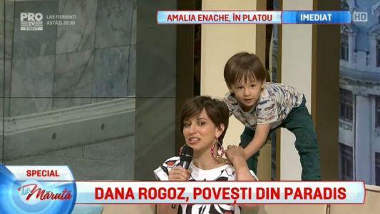 Dana Rogoz, povesti din Paradis