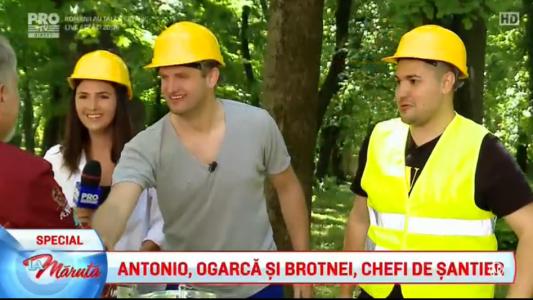 Antonio, Ogarca si Brotnei, Chefi de santier