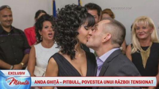 Anda Ghita - Pitbull, povestea unui razboi tensionat