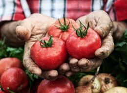 Solutia inedita a fermierilor din Brasov: rosiile vandute la bistro