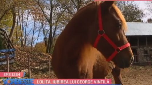 Lolita, iubirea lui George Vintila