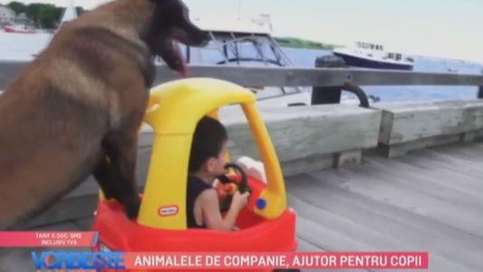 Animalele de companie, ajutor pentru copii