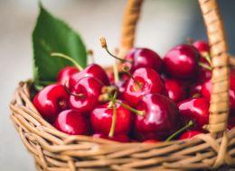 Solutia horticultorilor pentru a salva pomii fructiferi romanesti