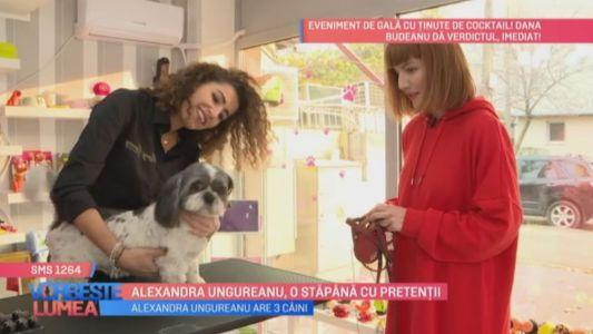 Alexandra Ungureanu, o stapana cu pretentii