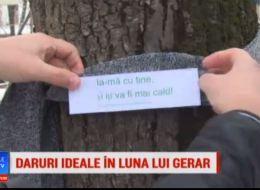 Gestul generos al unor tineri din Pitesti. Darurile au fost infasurate pe copaci