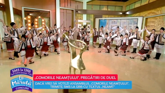 """""""Comorile Neamtului"""", lupta pentru un loc in finala"""