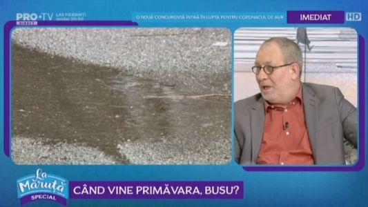 Cand vine primavara, Busu?