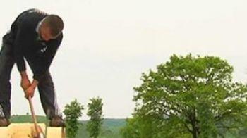 VIDEOEi pot fi campioni mondiali la TAIAT lemne!