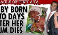 SENZATIONAL: O fetita s-a nascut la 2 zile dupa ce a murit mama sa, fosta campioana la patinaj!