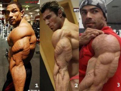 FOTO: Alege tricepsul care ti se potriveste! Antreneaza-te inteligent: 8 exercitii care iti fac bratele BETON!