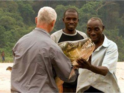 MONSTRUL care terorizeaza apele din Africa! Ce au descoperit savantii: MUTATIA GENETICA ce il face sa prinda 95% din prada! FOTO