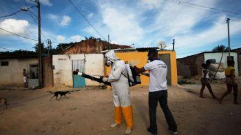 Sunt amenintate JO de Zika, virusul care a alertat o lume intreaga? Anuntul guvernului brazilian, tara cu 1.5 mil oameni afectati