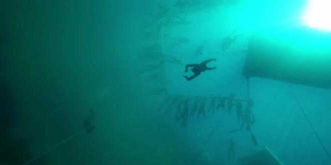 RECORDUL MONDIAL reusit de  regele scufundarilor . Cat timp si-a tinut respiratia sub apa