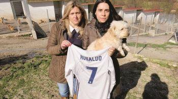 'Avem nevoie de ajutor pentru un adapost de caini!' Gestul surprinzator facut de Ronaldo