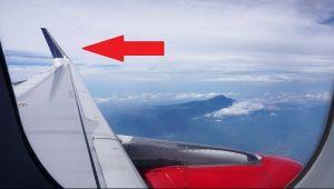 Detaliul pe care putina lume il cunoaste. De ce au unele avioane aripi cu varful ridicat?