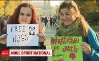 Imbratisarile, noul sport national! Avalansa de imbratisari pe strazile din Bucuresti! VIDEO