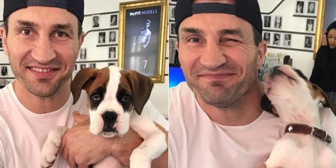 Cei mai elocventi grei raman Klitschko si Fury . Florian Ceafalau despre impresia falsa pe care o lasa divizia HW