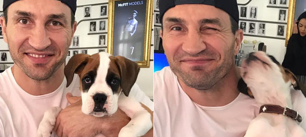 """Cei mai elocventi grei raman Klitschko si Fury"". Florian Ceafalau despre impresia falsa pe care o lasa divizia HW"